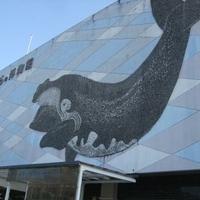 太地町立くじらの博物館の写真