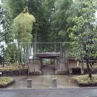 氷川の杜文化館の写真