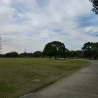 大仙公園の写真
