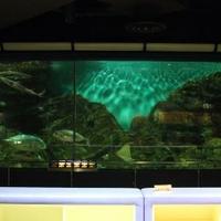 碧南海浜水族館の写真