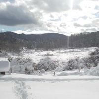 古峰ヶ原高原の写真