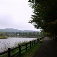 矢ケ崎公園の写真