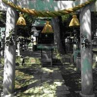 那古野神社の写真