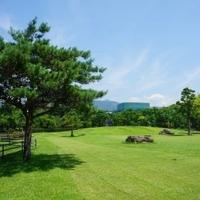 鏡野公園の写真