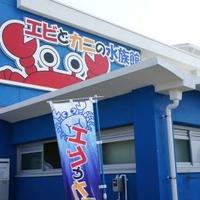 エビとカニの水族館の写真
