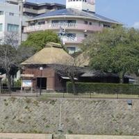 甲突川左岸緑地の写真