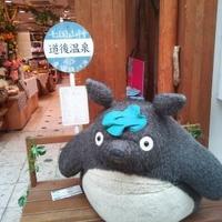 どんぐり共和国 松山店の写真