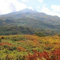 祓川キャンプ場の写真