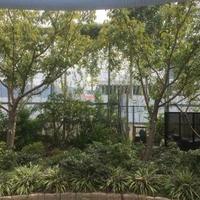 東大阪市 花園ラグビー場の写真