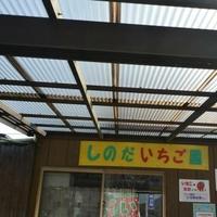 篠田いちご園の写真