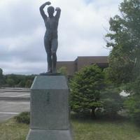 北海道立野幌総合運動公園プールの写真