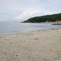 大志生木海水浴場の写真