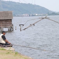 東郷湖畔公園の写真