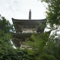 五智国分寺の写真