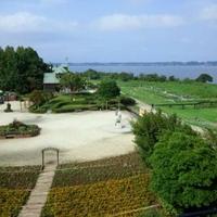 霞ケ浦総合公園の写真