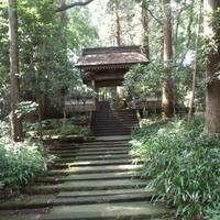 大雄寺の写真