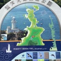 佐田岬の写真