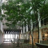 山口情報芸術センター(YCAM)の写真