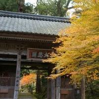 妙楽寺の写真