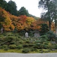 萬徳寺の写真