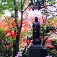 三滝寺の写真