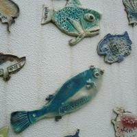 上越市立水族博物館 うみがたりの写真