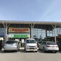 JA直売所 JA中野市農産物産館 オランチェの写真
