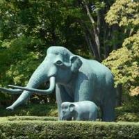 山梨県立考古博物館の写真