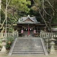宇佐八幡神社の写真