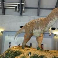佐川地質館の写真