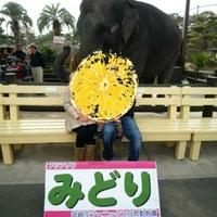 宮崎市フェニックス 自然動物園の写真