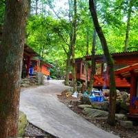つちうちキャンプ場の写真