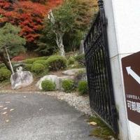 櫻井家住宅・日本庭園の写真