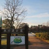 泉の沼公園の写真