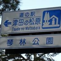 道の駅津田の松原の写真