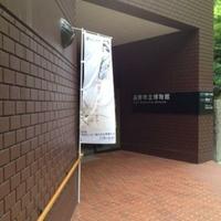 遠野市立博物館の写真