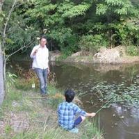 岩倉市役所 自然生態園の写真