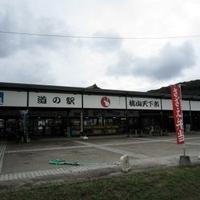 道の駅桃山天下市の写真