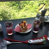 五老ヶ岳公園展望タワーの写真