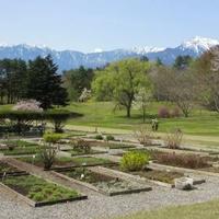 山梨県森林総合研究所八ヶ岳薬用植物園の写真