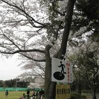 流山市総合運動公園の写真