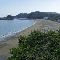 日和佐城の写真