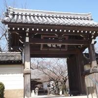 教信寺の写真