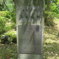 為松公園(中村城跡)の写真
