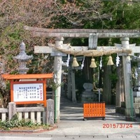 椙本神社(伊野の大国さま)の写真