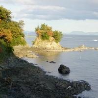 黒島海浜公園の写真
