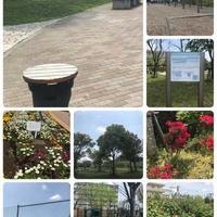 広尾防災公園の写真