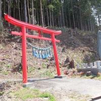 箱崎神社の写真