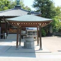 国分寺(第59番札所)の写真