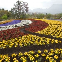 くじゅう花公園の写真
